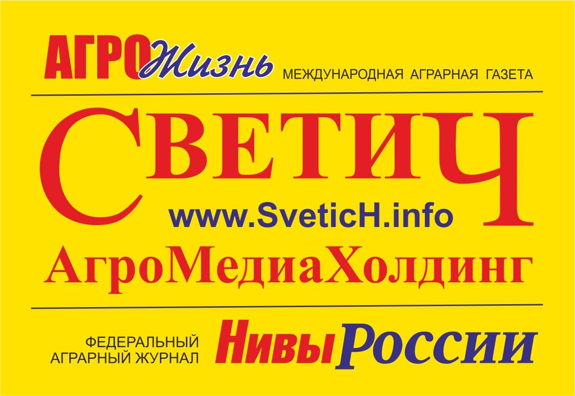 Информационное агентство «Светич»